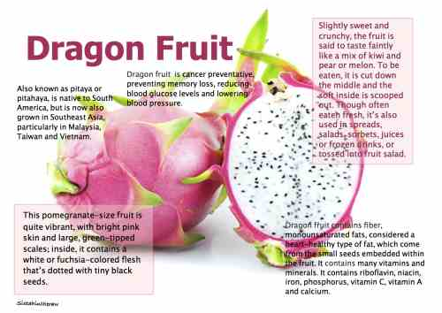 healthy vegetable and fruit juice recipes dragon fruit wine