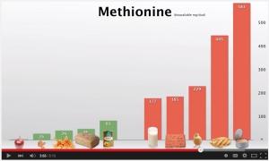 MethionineSources
